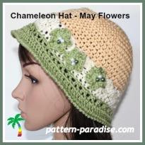 chameleon may adult IMG_0931.jpg